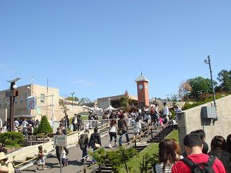 090926_旭山動物園.JPG