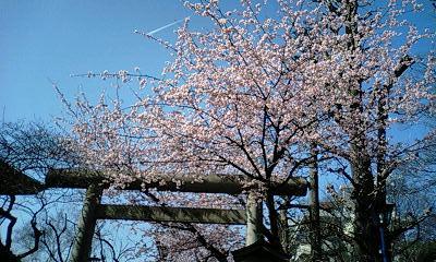 100314_上野公園.jpg