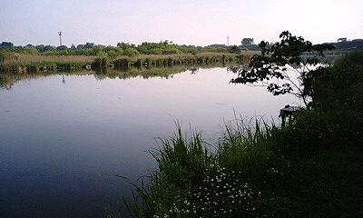 100522_夜明けの川.jpg