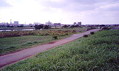 101002_tamagawa.jpg